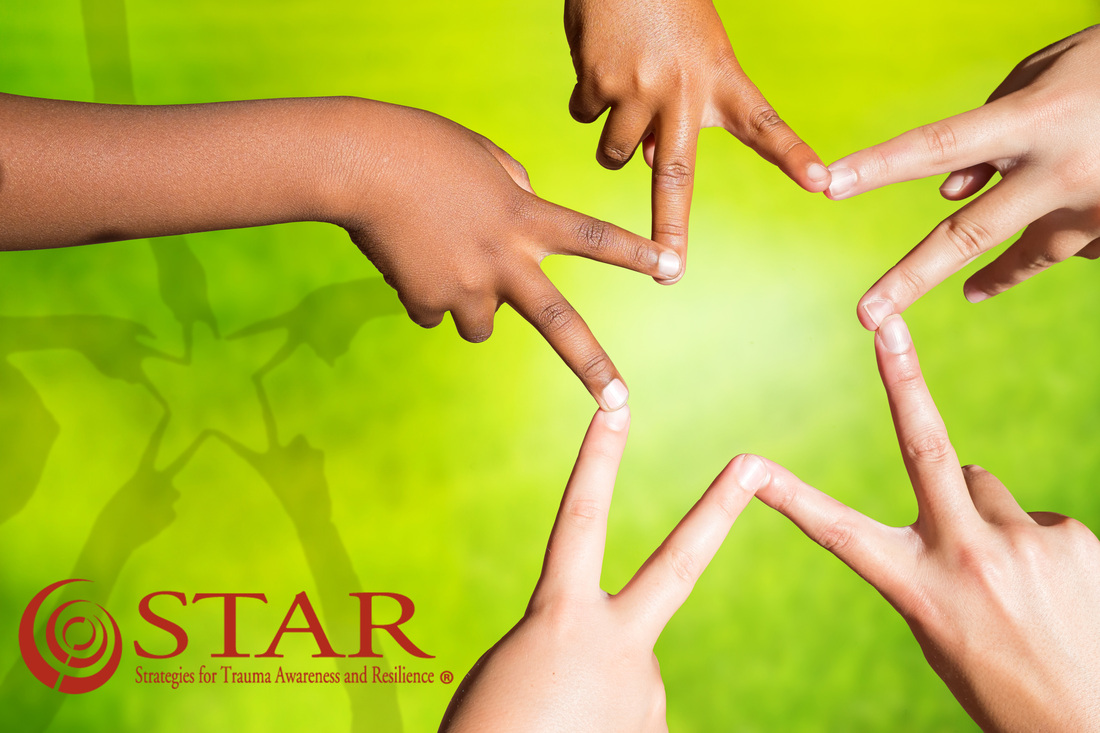 Strategies for Trauma Awareness and Resilience the STAR Training